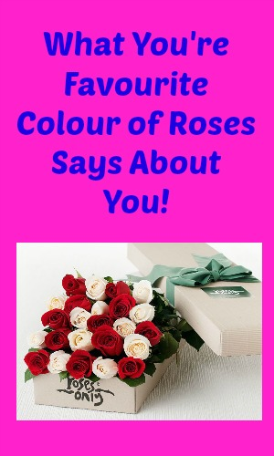 What Your Favourite Colour of Roses Says About You