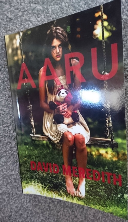 book cover of Aaru showing a young girl in a white dress sitting on a swing holding a stuffed panda