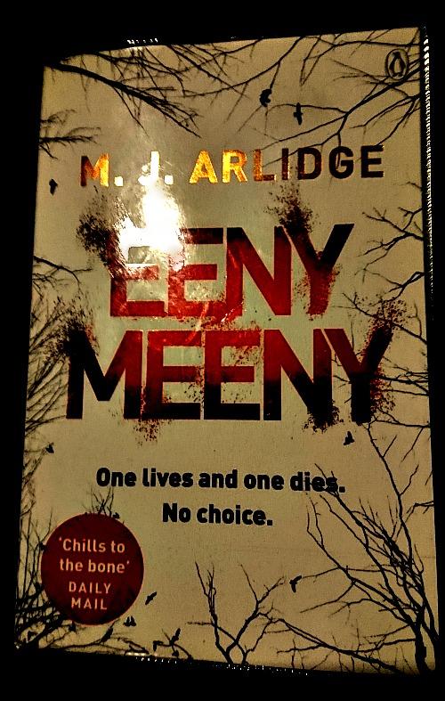 Eeny Meeny by M J Aldridge book cover
